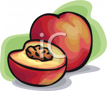 Find Clipart Peach Clipart Image 26 Of 33