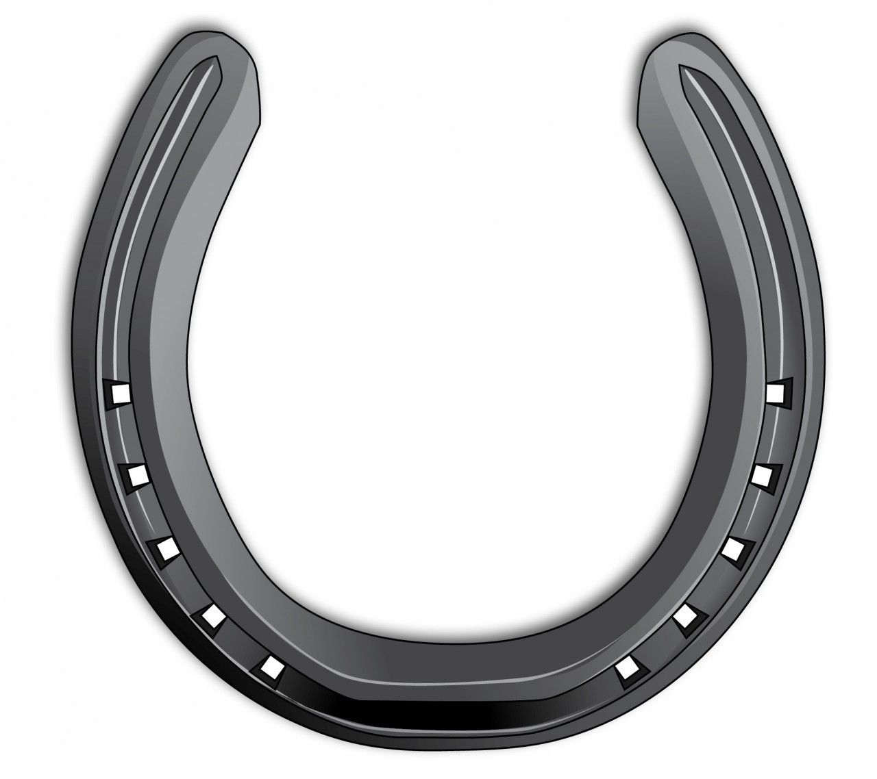 Image gallery horseshoe for Where to buy used horseshoes