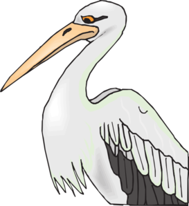 Pelican With Sharp Beak Clip Art At Clker Com   Vector Clip Art Online