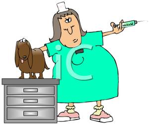 Vet Giving A Dog A Shot   Royalty Free Clipart Picture