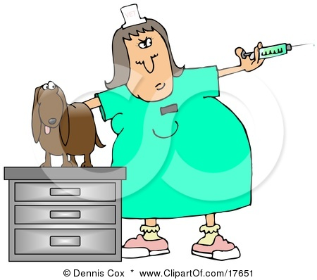 Abeka  Clip Art  Veterinarianlady with instruments