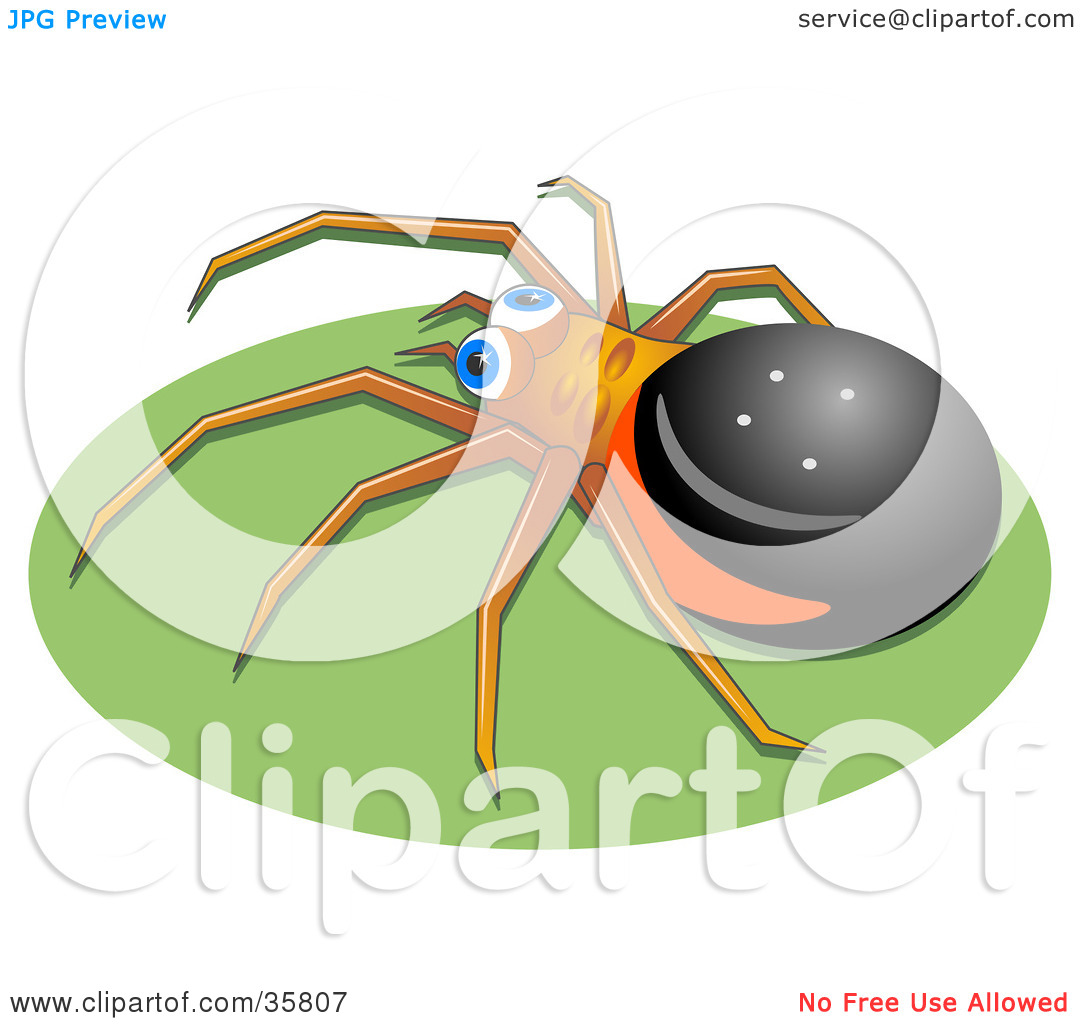 Clipart Illustration Of A Black Brown And Red Spider With Blue Eyes