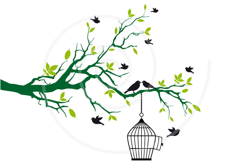 Free Birds With Open Birdcage On Tree Branch Green By Illustree