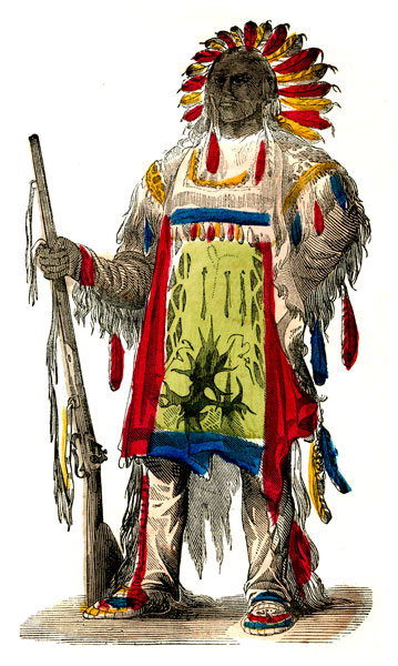 Mrneely   The Iroquois Tribe