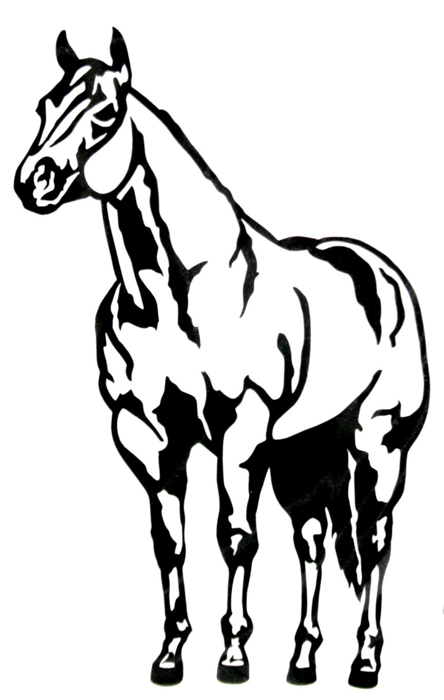 Trailer Accessories   Decals Stickers   Western Graphics Horse Decal
