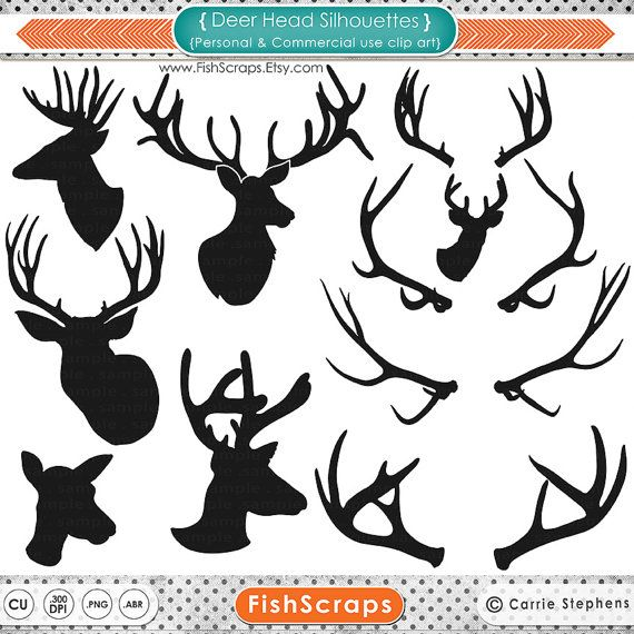 Antlers   Outlines   Buck   Doe   Reindeers   Stag   Digital Clipart