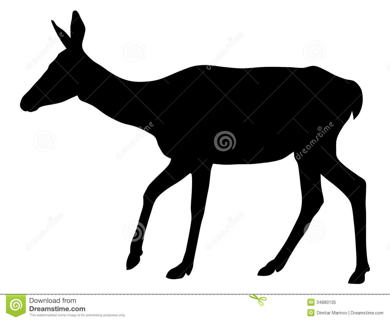 Buck And Doe Clipart Doe Royalty Free Stock Photo