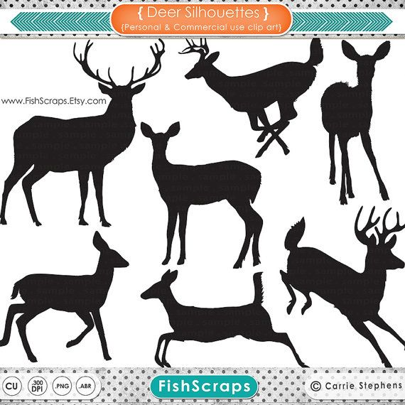 Buck Doe Reindeer Clipart Animal Clipart Digital Graphics Deer Png