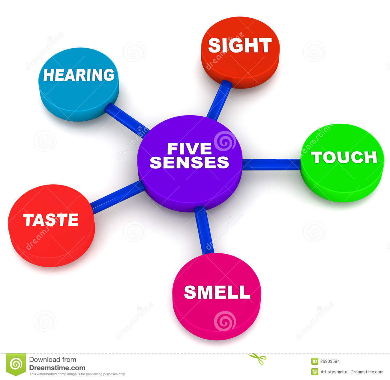 Five Senses Of Human Beings Sight Touch Hearing Taste And Smell