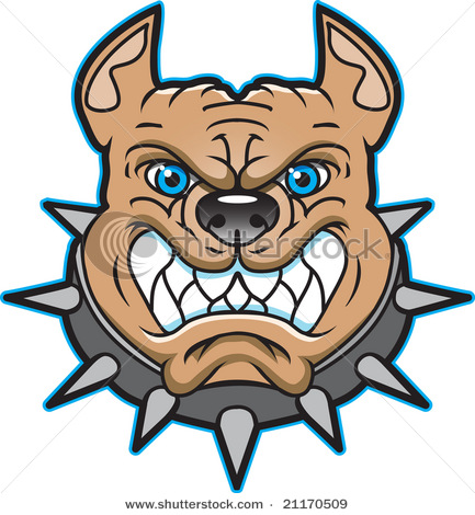 Mean Looking Pit Bull Logo Bearing Teeth With Spiked Collar   Vector
