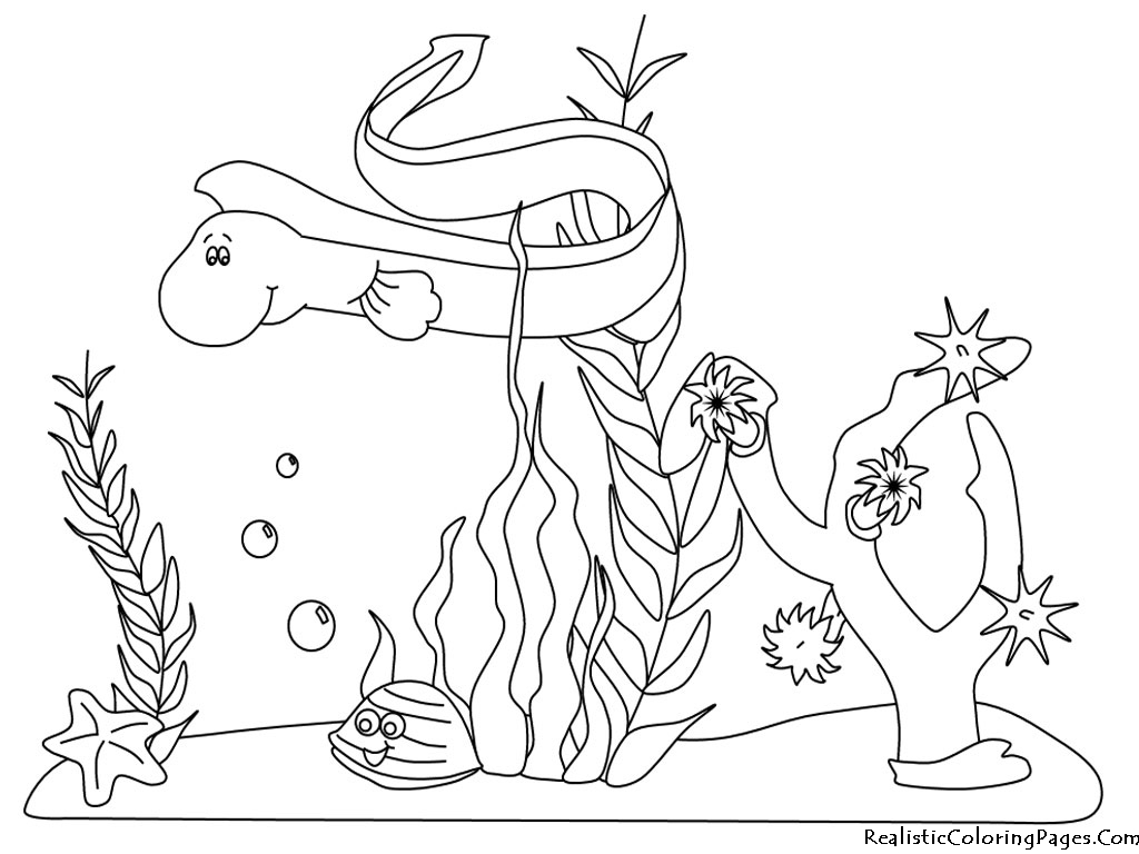 ocean plants coloring pages free - photo#5