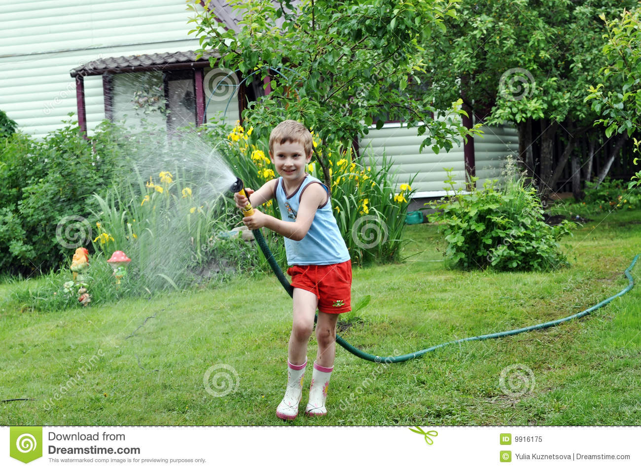 Boy Watering Lawn With Hose Royalty Free Stock Photo   Image  9916175