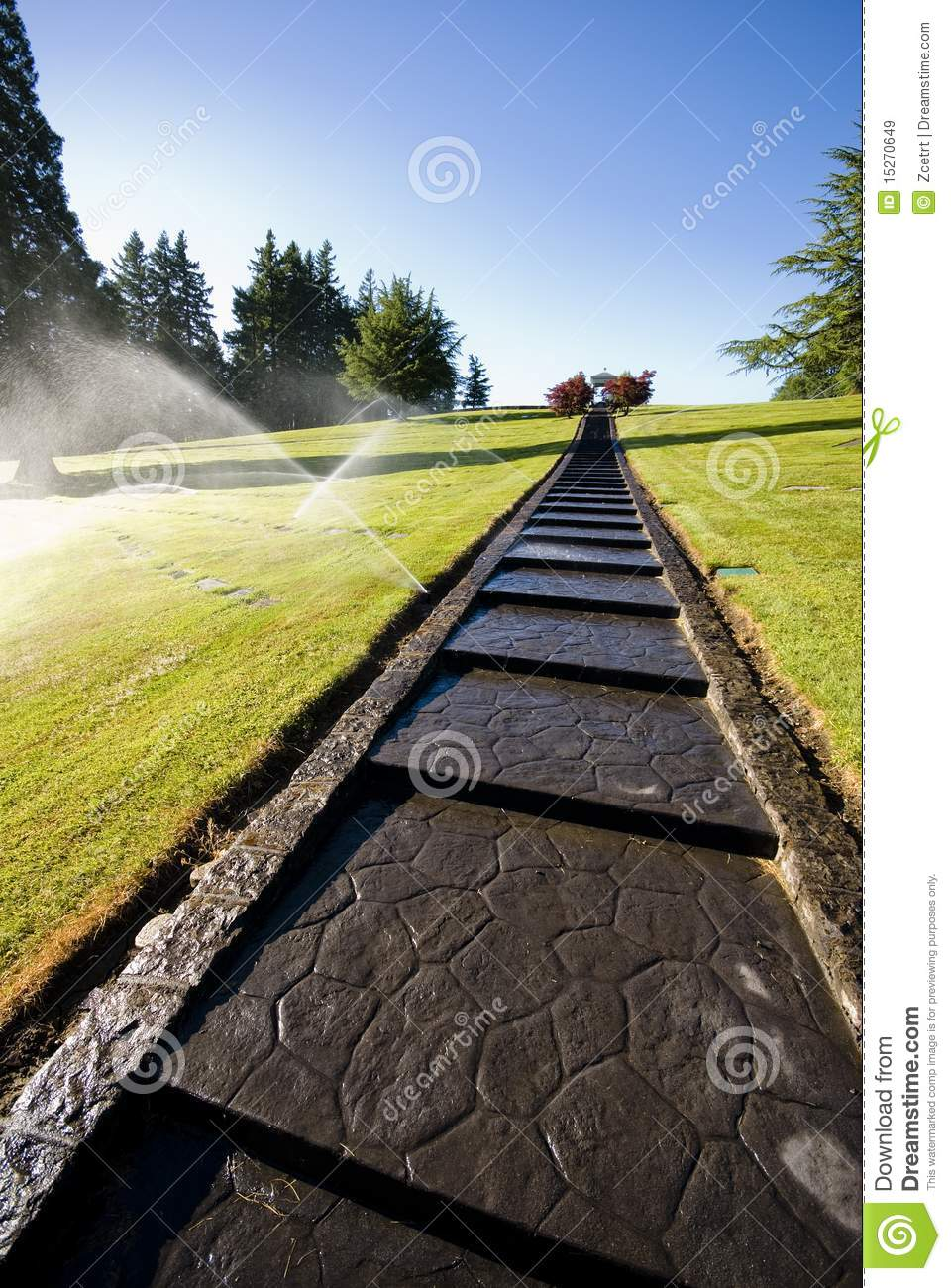 Lawn Watering Royalty Free Stock Images   Image  15270649