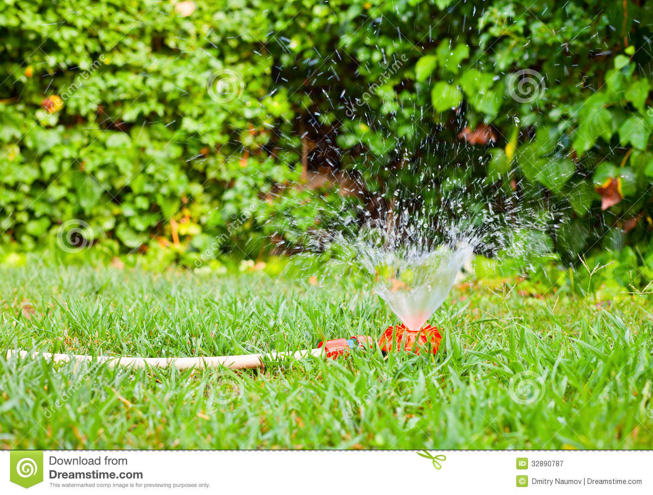 Lawn Watering Royalty Free Stock Photography   Image  32890787