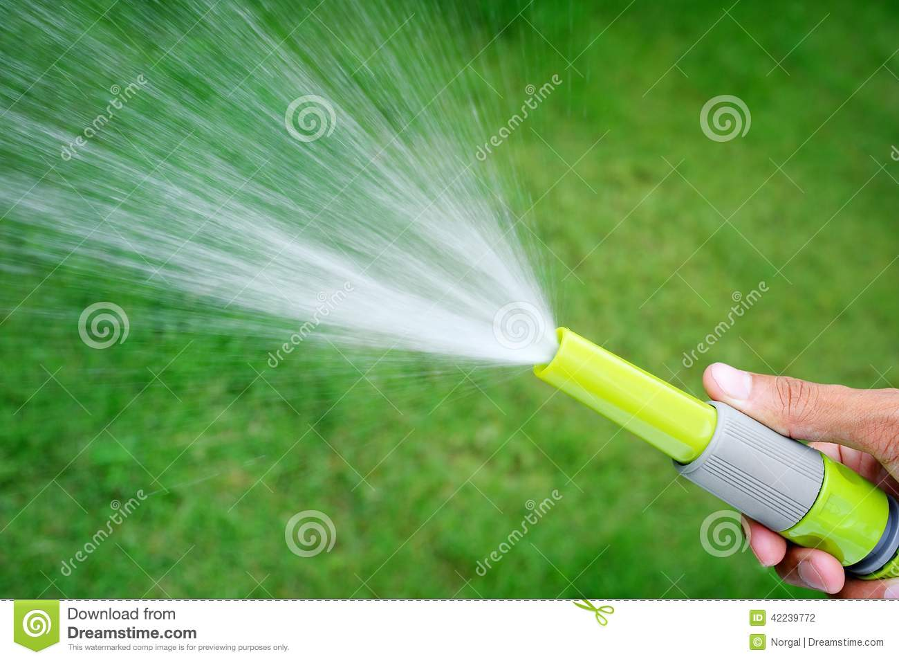 Watering Lawn Stock Photo   Image  42239772