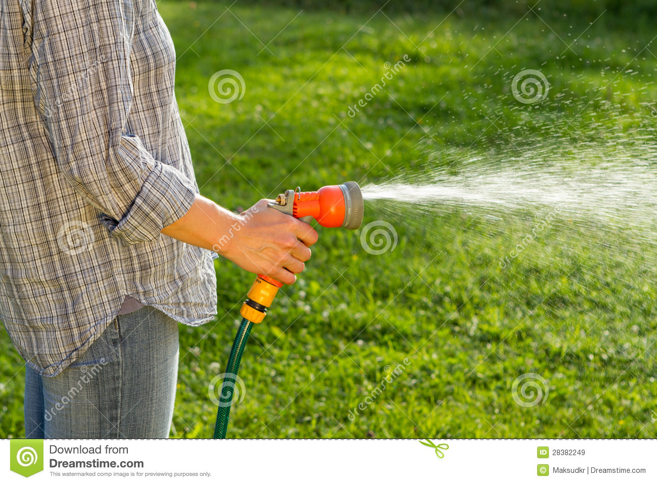 Watering The Lawn Royalty Free Stock Images   Image  28382249