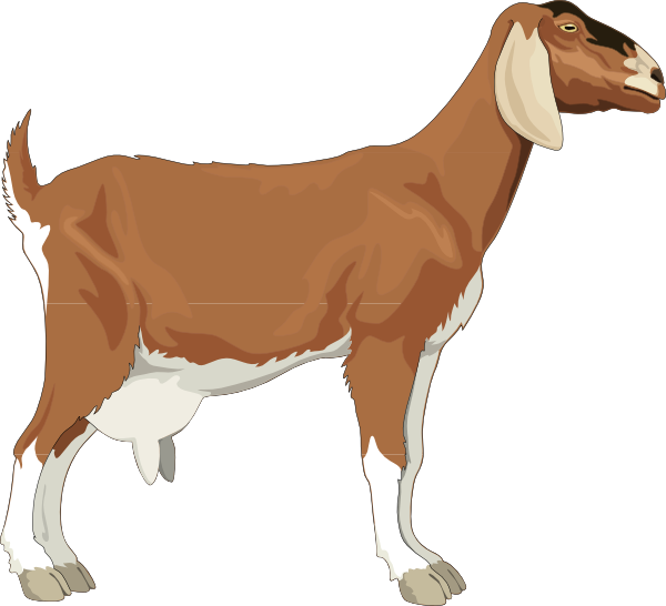 Clip Art Goat Clip Art cartoon goat clipart kid clip art at clker com vector online royalty free