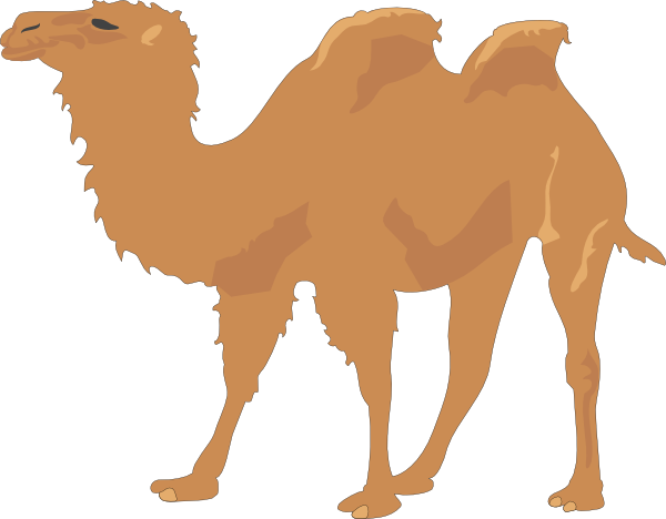Camel With Two Humps Clip Art