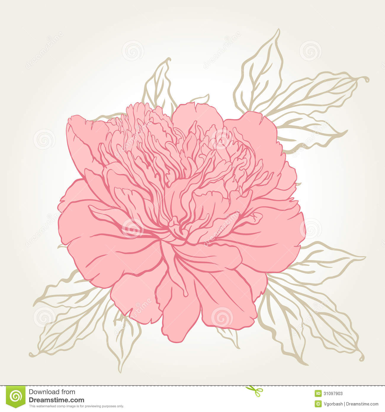 Beautiful Peony Bouquet Design On Beige Background Stock Photos