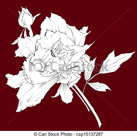 Vector Of Romantic Vector Outline Of Retro Peony Csp15137287   Search