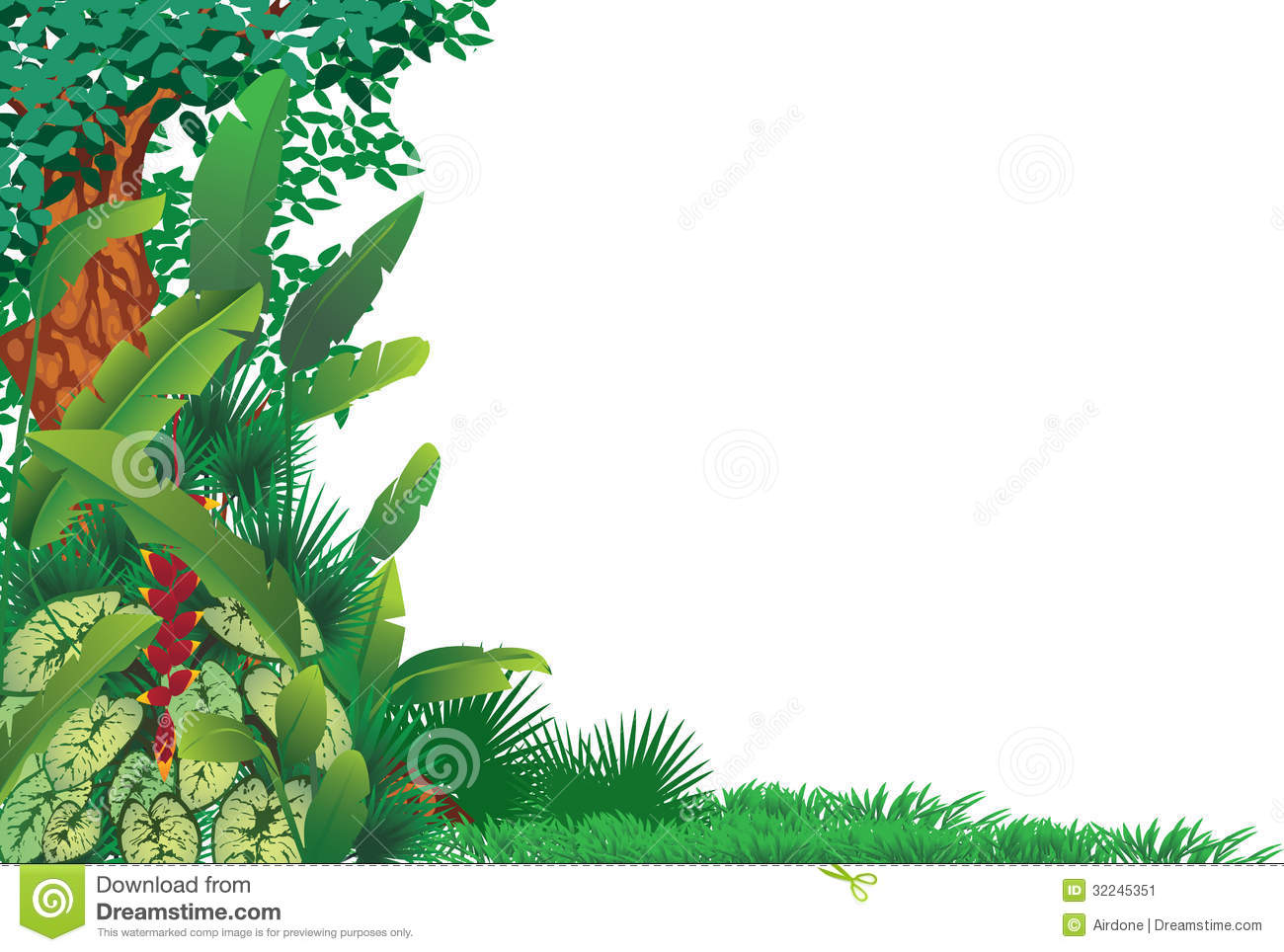 Exotic Tropical Forest Stock Image   Image  32245351