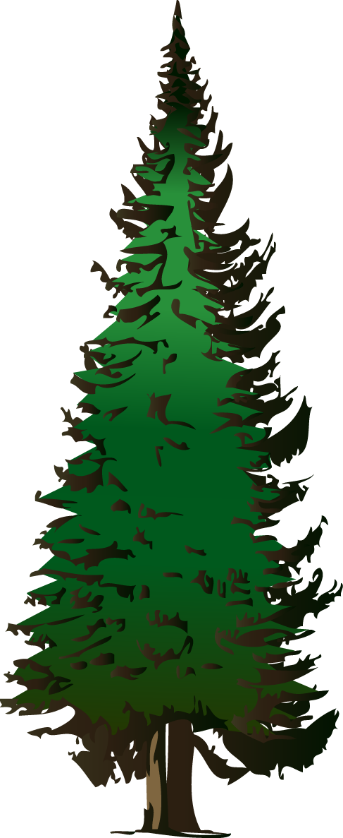 Clip Art Evergreen Tree Clipart evergreen tree free clipart kid pine vector download