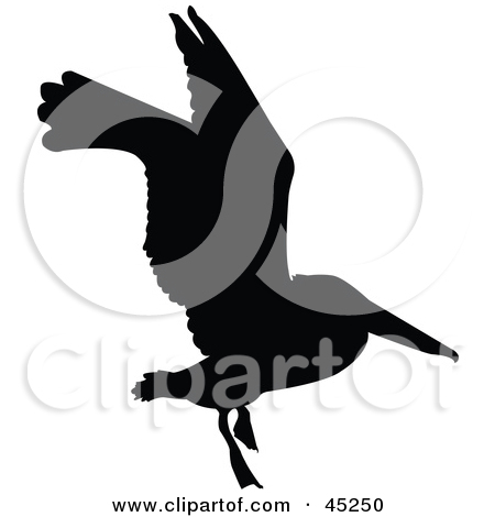 Royalty Free  Rf  Bird Silhouette Clipart   Illustrations  1