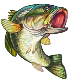 Jumping Bass Clip Art   Vector Genius