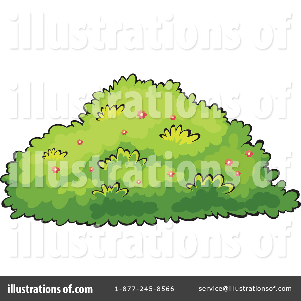 Pin Bushes And Shrubs Clipart With A Tree And Shrub On Pinterest