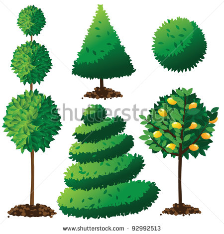 Topiary Landscape Plants Collection Eps 8 Vector Grouped For Easy