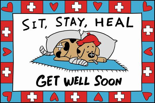 clip art get well pictures - photo #23