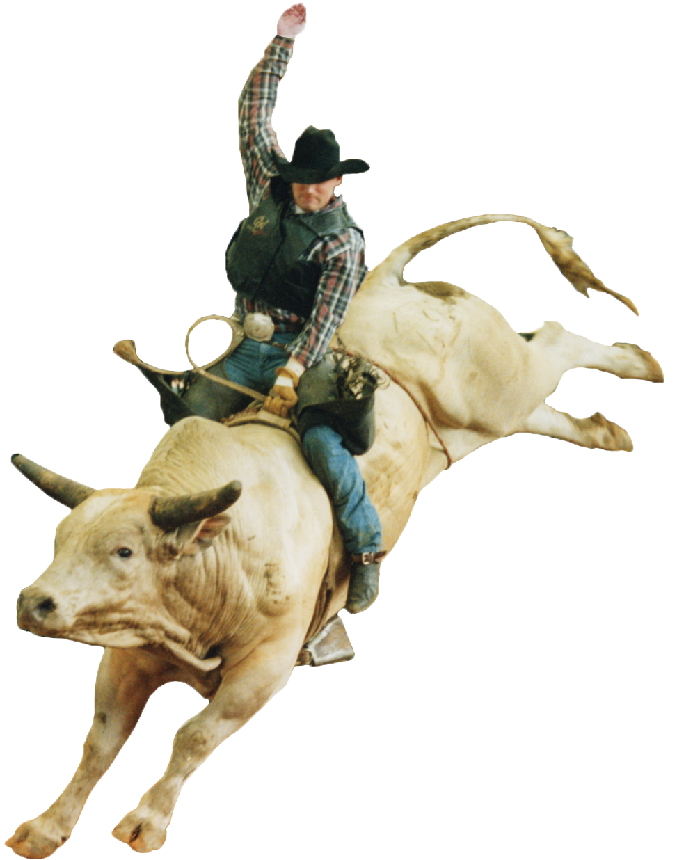 Rodeo Bull Riding Clip Art