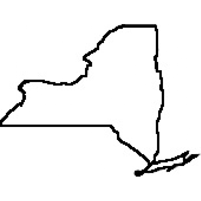 outline of the state of new york