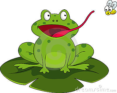 Frog With Fly Royalty Free Stock Photography   Image  23691207