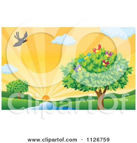Of A Tree And Birds By A Creek At Sunset   Royalty Free Vector Clipart