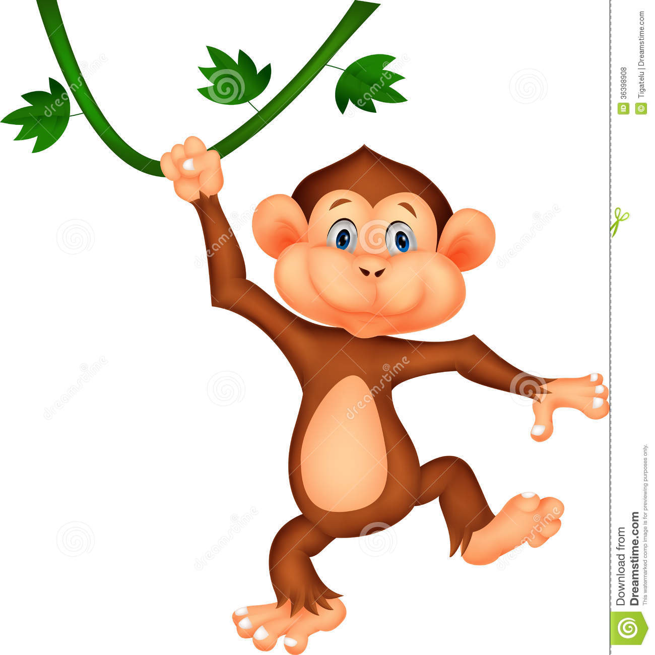 monkey and girl videos