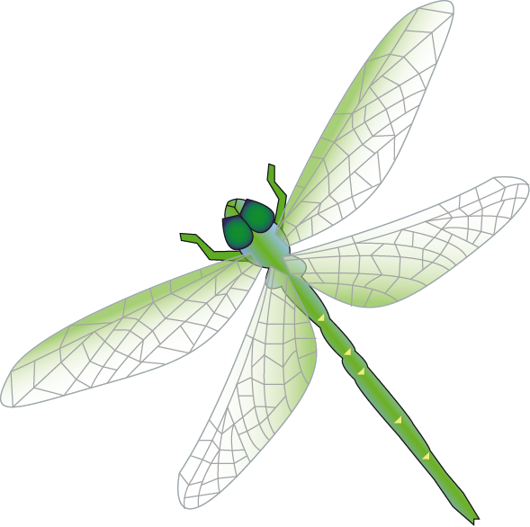 Green Dragonfly Clipart Dragonfly Green 2