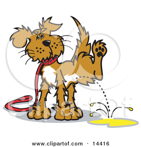 14416 Dog On A Leash Lifting His Leg To Pee Clipart Illustration Jpg