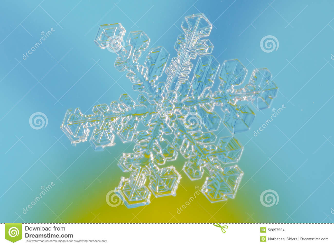 Tiny Snowflake With Blue Background