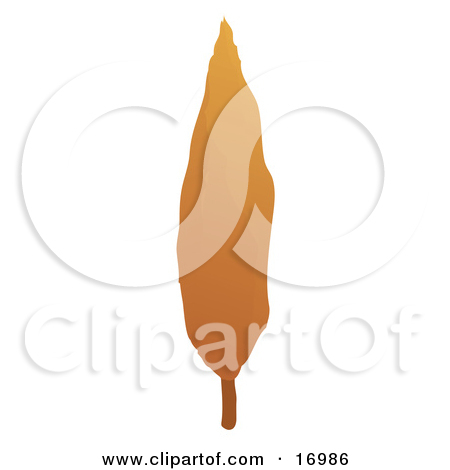 Furnace Filter Clipart   Free Clip Art Images