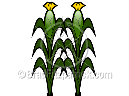 Corn Crops Clipart - Clipart Kid