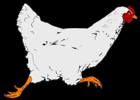 Description Chicken Clipart 01 Svg
