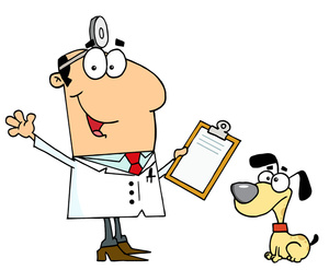 Veterinarian Clipart Image   Cute Little Puppy Dog At The Vets Getting