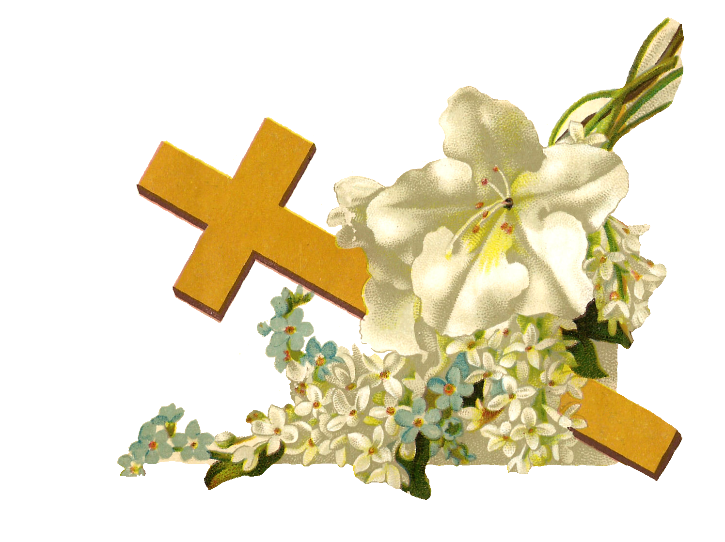 Antique Images  Free Religious Clip Art  Gold Cross And White Flowers