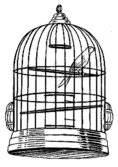 Bird Cage   Http   Www Wpclipart Com Animals Birds  Miscellaneous Bird