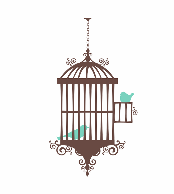 Bird Cage Wall Decal Shabby Chic Wall Decal Whimsical Birds Girl Baby