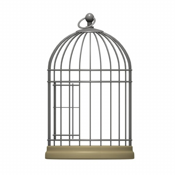 Canary Bird Cage Clipart