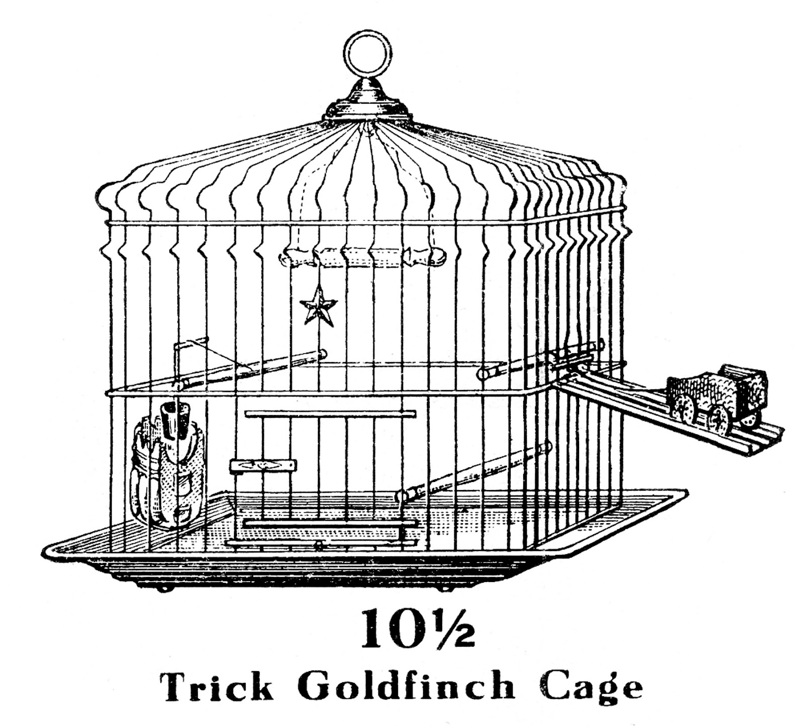 Vintage Clip Art   Trick Bird Cage   The Graphics Fairy