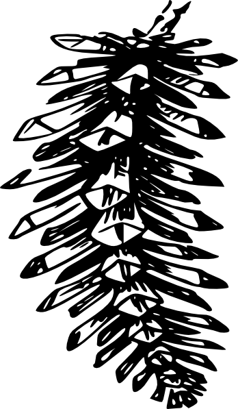 Pine Cone Outline Clipart - Clipart Kid