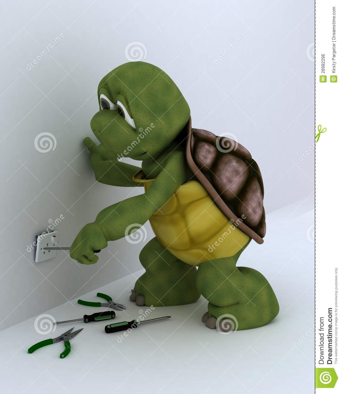 Tortoise Electrical Contractor Royalty Free Stock Image   Image
